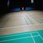 羽毛球场木地板